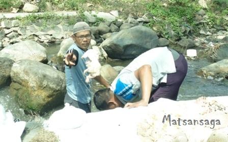 Pelaksanaan Kurban Di Madrasah