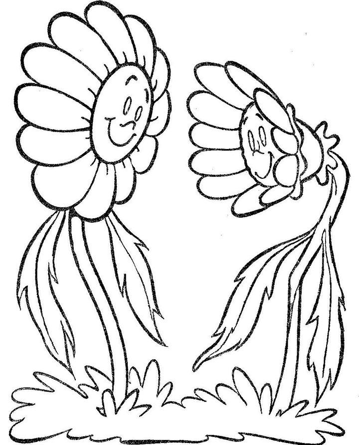 girasoles para colorear