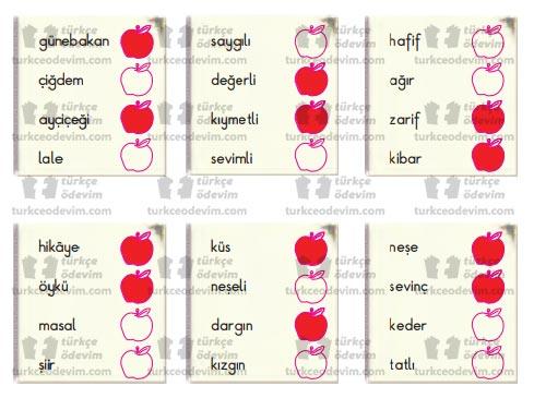 3. Sınıf Nova Yayınları Türkçe Çalışma Kitabı 111. 112. 113. 114. 115. Sayfa Cevapları Günebakanlar Metni