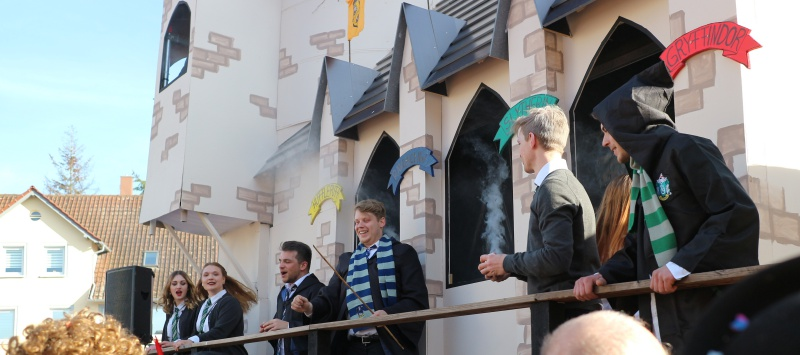 Fasching Harry Potter