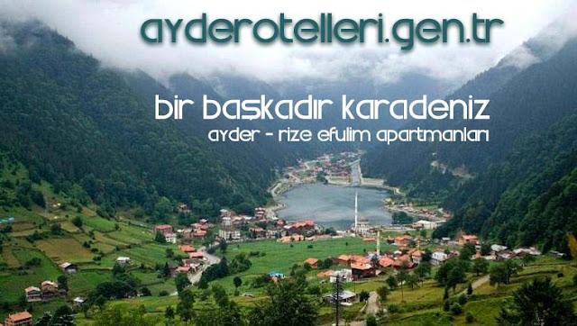 Ayder Otelleri Karadeniz Rize Ayder Otelleri Daire Apartman Pansiyon