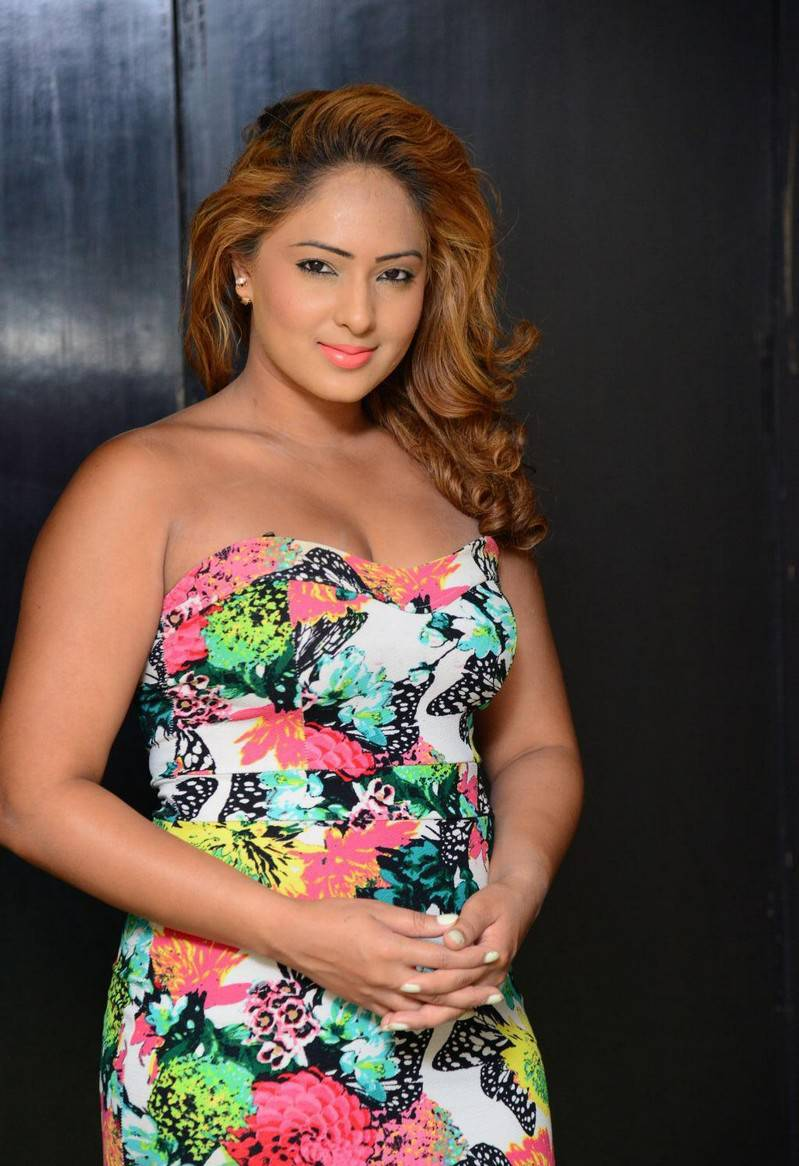Tollywood Actress Nikesha Patel Photos In Floral Dress