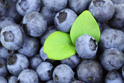 Zat penyusun dan fungsi vitamin