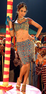 Mallika Sherawat test Unseen eXposure In Choli stills