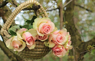Basket.Roses.jpg