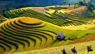 Tempat Wisata Terpopuler di Indonesia