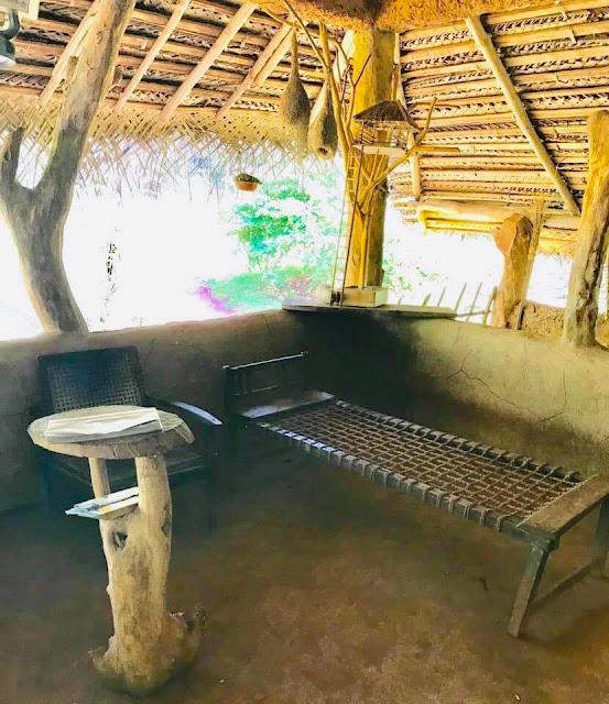 ඉපැරණි ගම බලන්න යමුද ❤️🌱🌸🍃🍄🎋 (Let's Go See The Ancient Village) - Your Choice Way