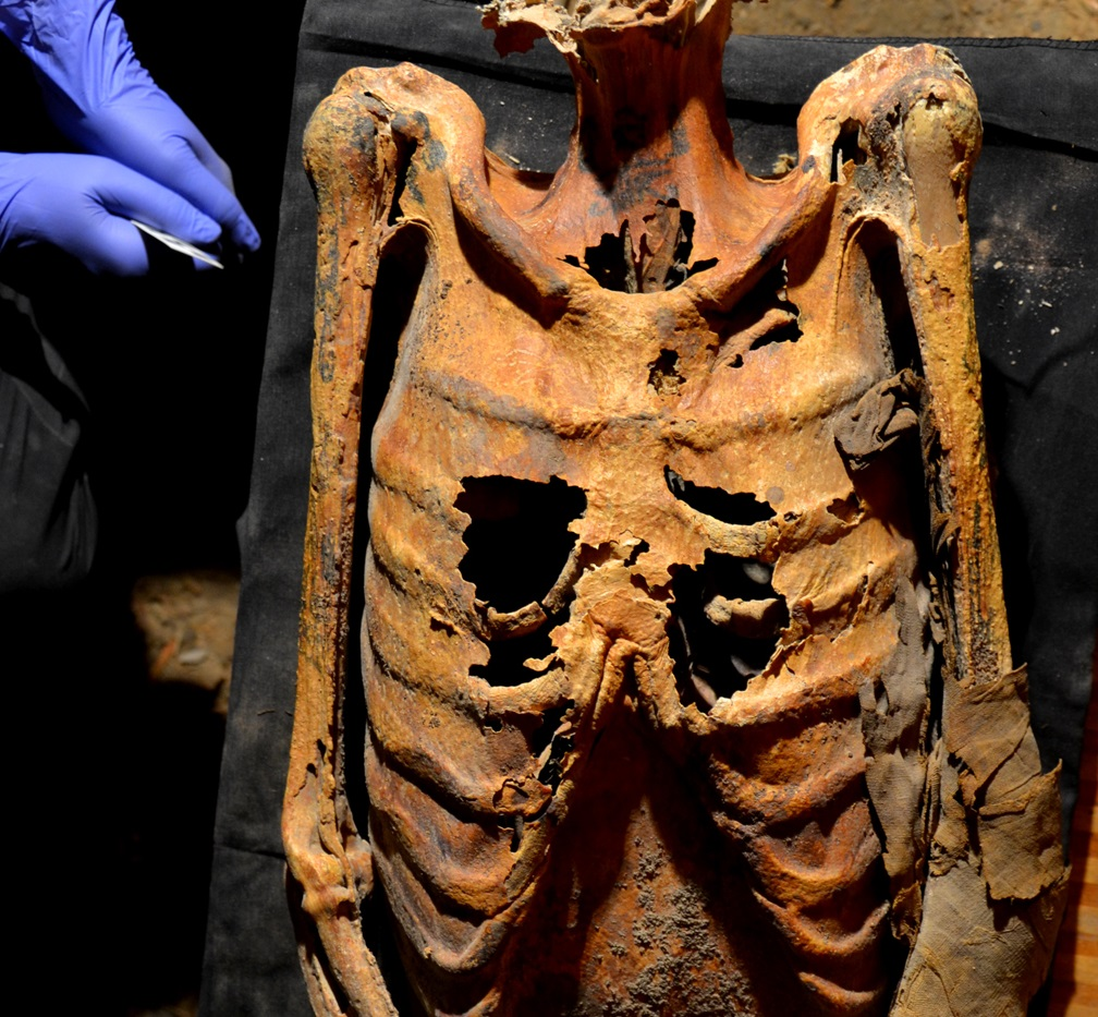 3,000-year-old Tattooed Mummy Belonged To Top Official Or