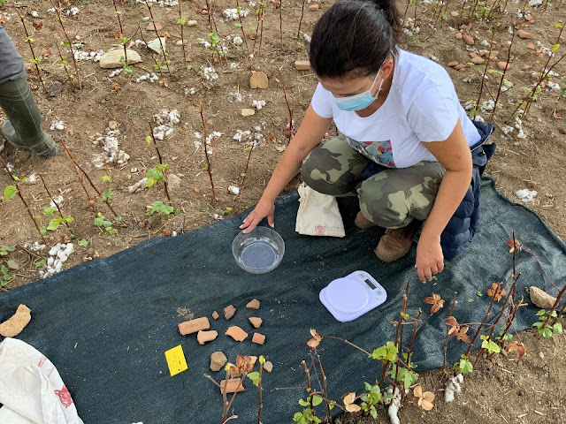 New archaeological sites attract scientific interest in the Peraia of Samothrace