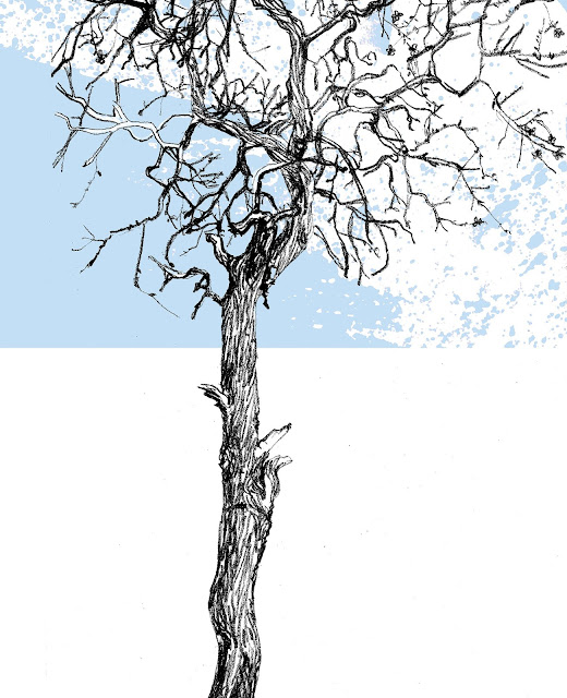 Ilustración de Patricio Hidalgo