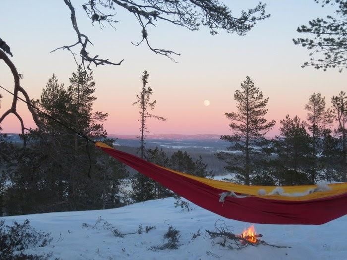 Sova i hängmatta vinter
