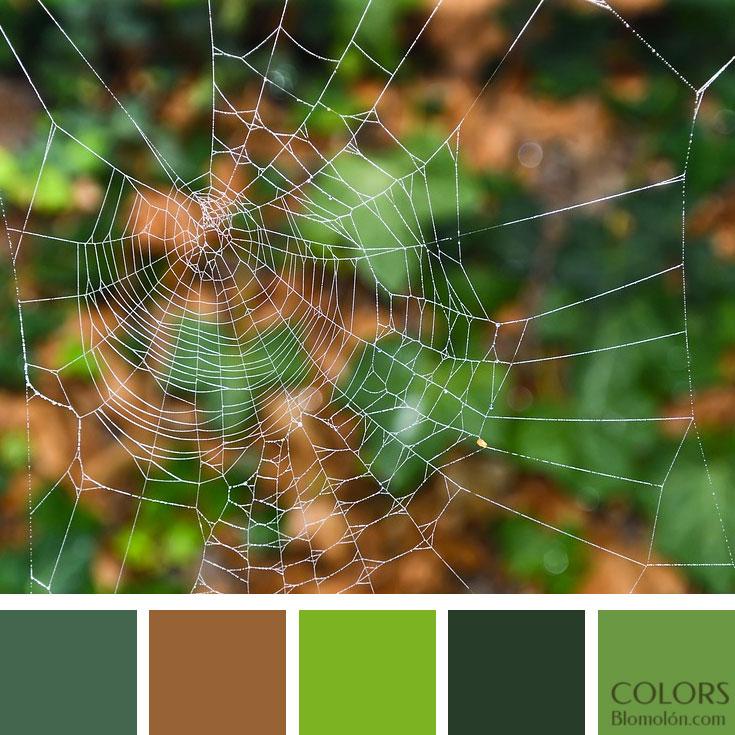variedad_en_color_paletas_de_colores_90
