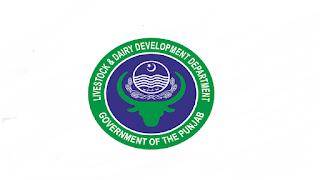 www.plddb.pk Jobs 2021 - Punjab Livestock & Dairy Development Board (PLDDB) Jobs 2021 in Pakistan