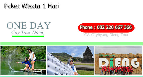 City Tour Dieng paket one day rombongan dieng