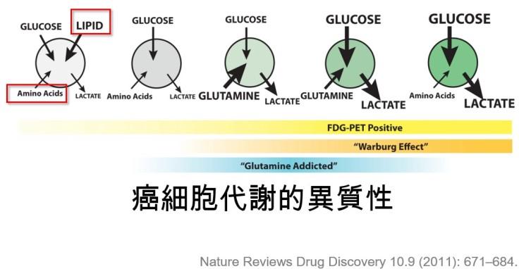 癌細胞其實具有不同的代謝方式-照護線上