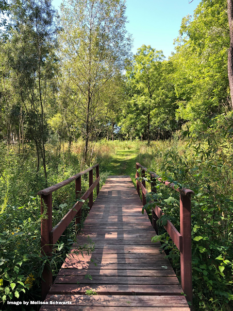 A wooden bridge beckons for exploration at Dixie Briggs-Fromm Nature Preserve.
