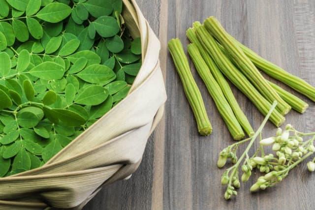 Moringa Oleifera là gì ? Tác dụng và mức độ an toàn