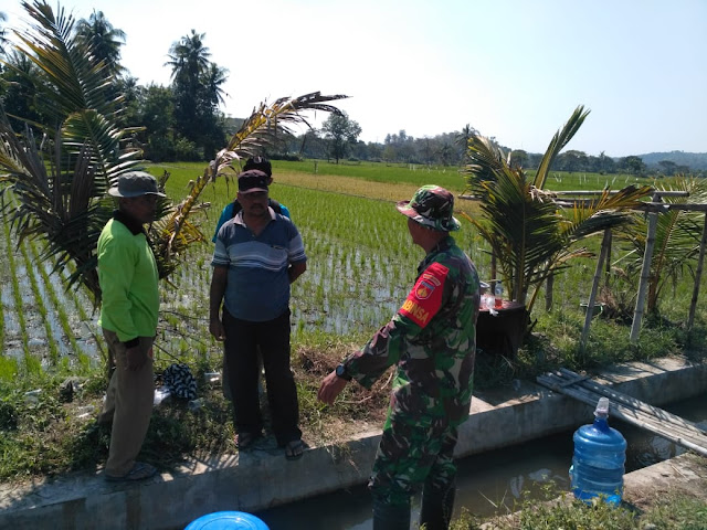 Susanto Kadus IV Desa Jimbung Dukung Penuh TMMD Reg 105 Kodim Klaten
