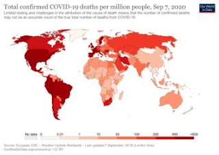 world, corona virus, corona cases