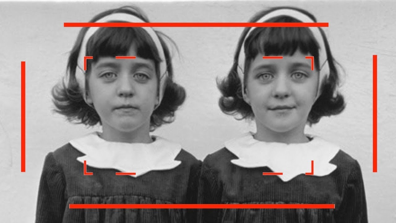Identical Twins by Diane Arbus - Story Behind the Iconic Photograph