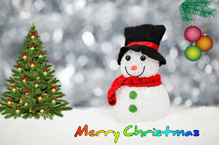 Beautiful Merry Christmas Wishes Images in Hindi and English