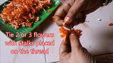 kankambaram-flower-tying-1ac.png