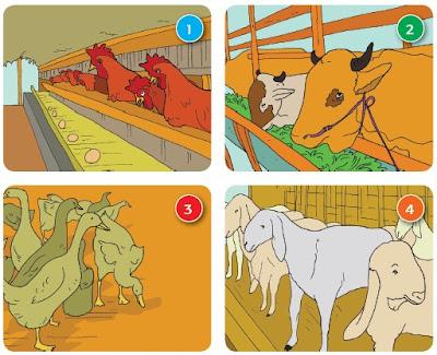 kunci jawaban tema 4 kelas 5 pembelajaran 3