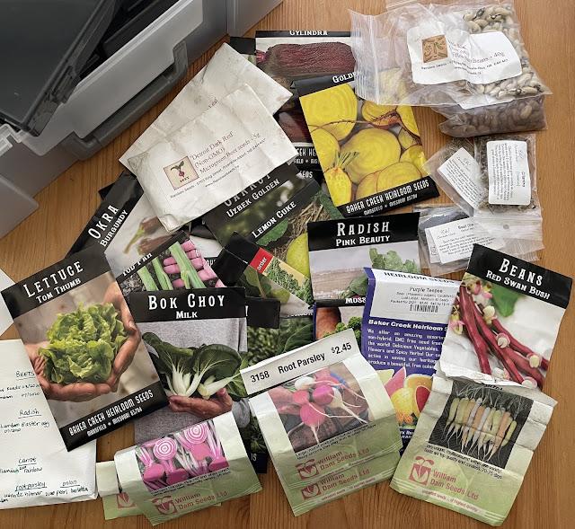 vegetable growing seeds