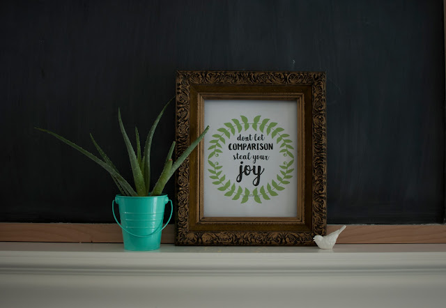 Don't let comparison steal your joy - printable word art in vintage gold frame with a succulent in an aqua bucket.