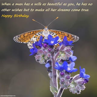 birthday messages for wife birthday images