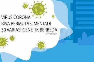 30 variasi genetik berbeda virus corona
