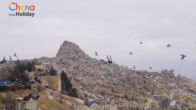 Pigeon Valley di Turki