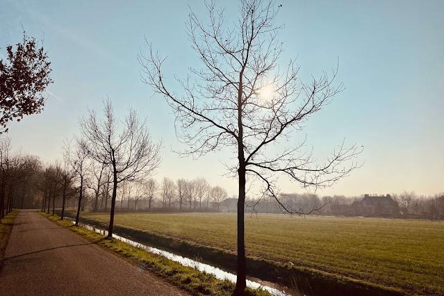 Rondeel Culemborg Wandelen