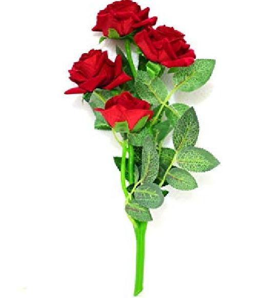 setangkai bunga mawar merah