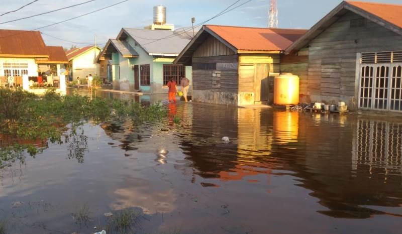 Air Pasang Laut Meluap Hingga 4 Kelurahan di Dumai Tergenang 'Pemko Tutup Mata'