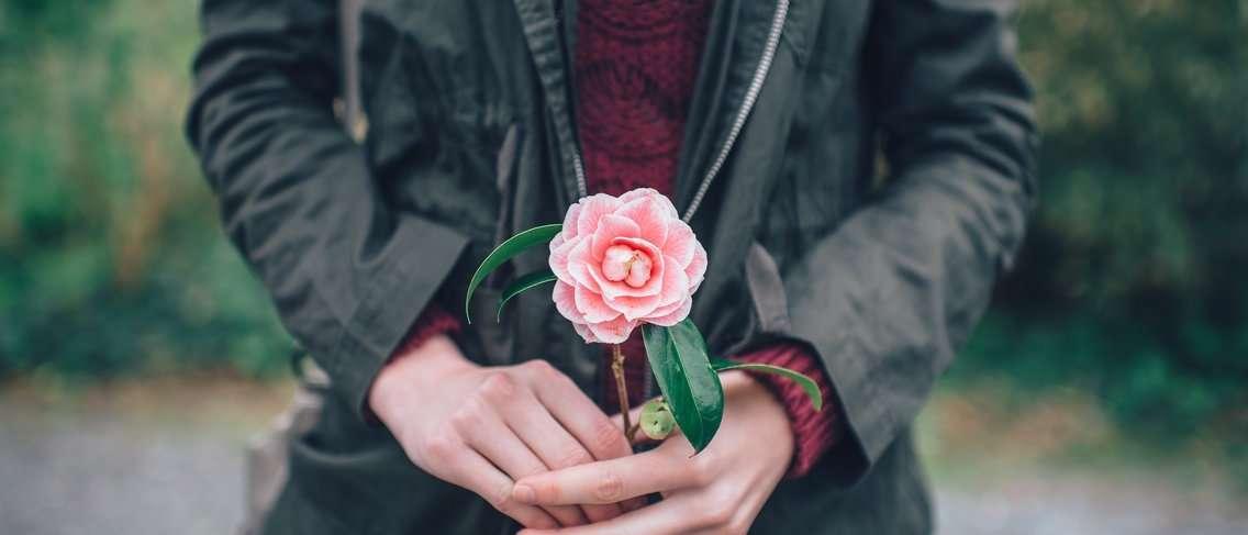 Tips Mencegah Sel Kanker Rahim Dengan Menggunakan Sarang ...