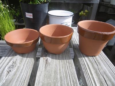 クフェア 鉢