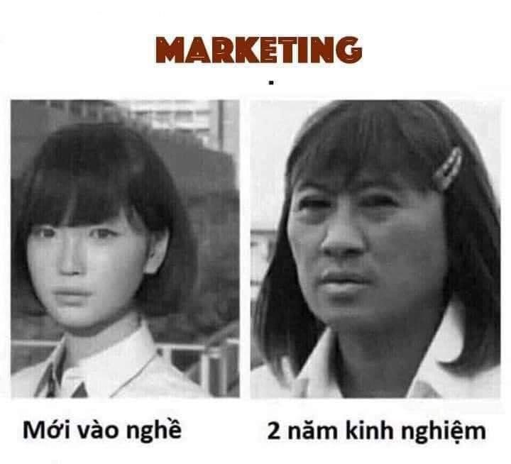 Marketing có bao nhiêu nhánh? Khi nào thì gọi là chuyên gia? Marketing bao nhiêu cấp độ và được xem là giỏi trong thời đại số 4.0?
