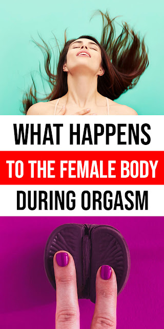 What Happens During The Male Orgasm