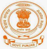Department Governance Reforms & Public Grievances DGR Punjab IT Cadre Recruitment 2021 – 293 Posts, Salary, Application Form - Apply Now