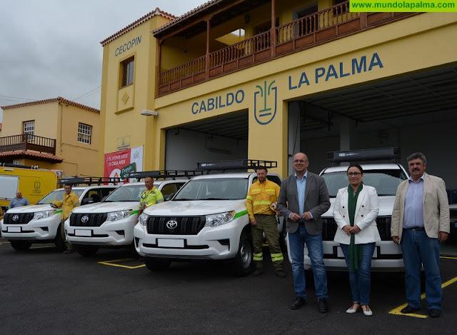 El Cabildo apela a la ciudadanía a autoproteger las viviendas de los incendios forestales con la campaña 'Despeja, no esperes'