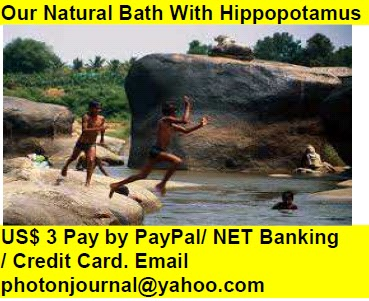 Our Natural Bath With Hippopotamus Book Store Buy Books Online Cash on Delivery Amazon Books eBay Book  Book Store Book Fair Book Exhibition Sell your Book Book Copyright Book Royalty Book ISBN Book Barcode How to Self Book