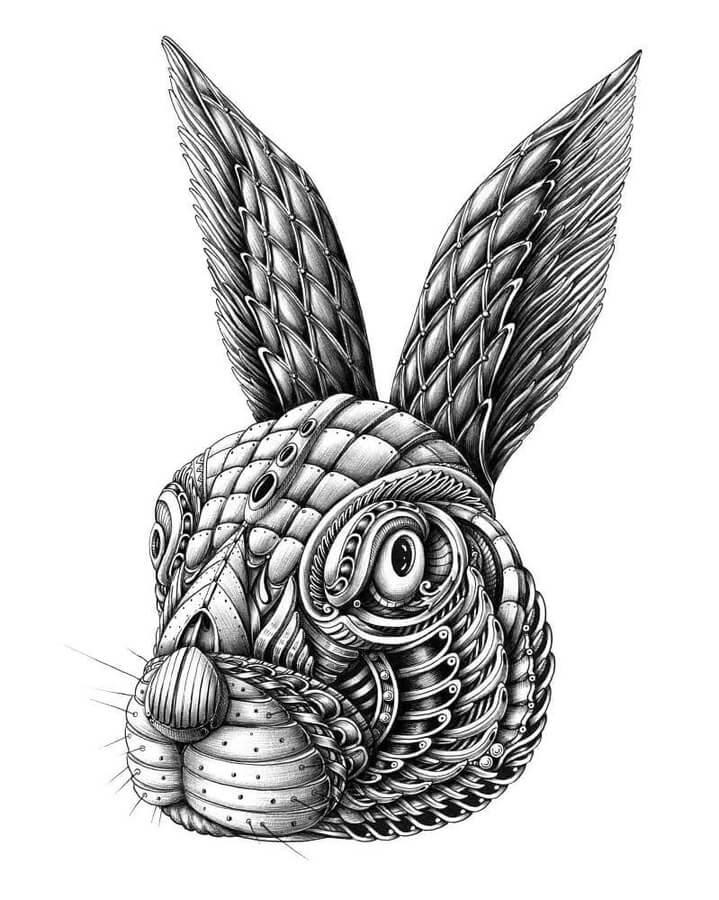 01-Hare-Alex-Konahin-www-designstack-co