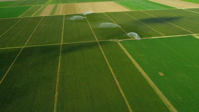 खेती के लिए खरीदना चाहते हैं जमीन तो SBI की इस स्कीम का उठाएं फायदा