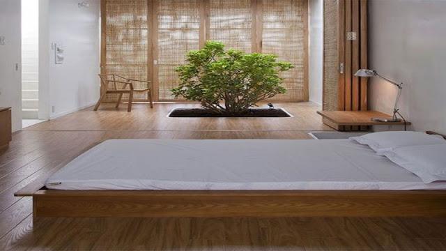 Membangun konsep rumah alami dengan tanaman hijau
