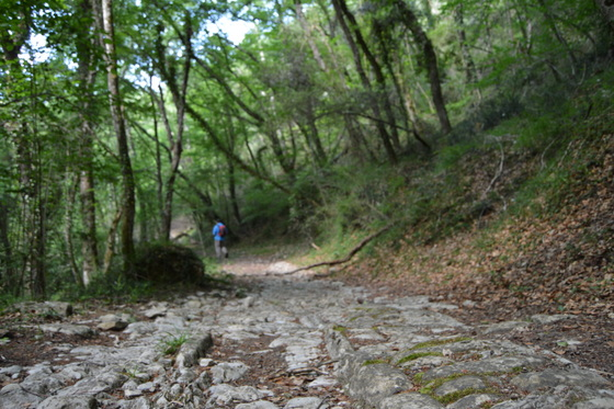 imagen_burgos_valle_mena_merindades_paisaje_calzada_romana