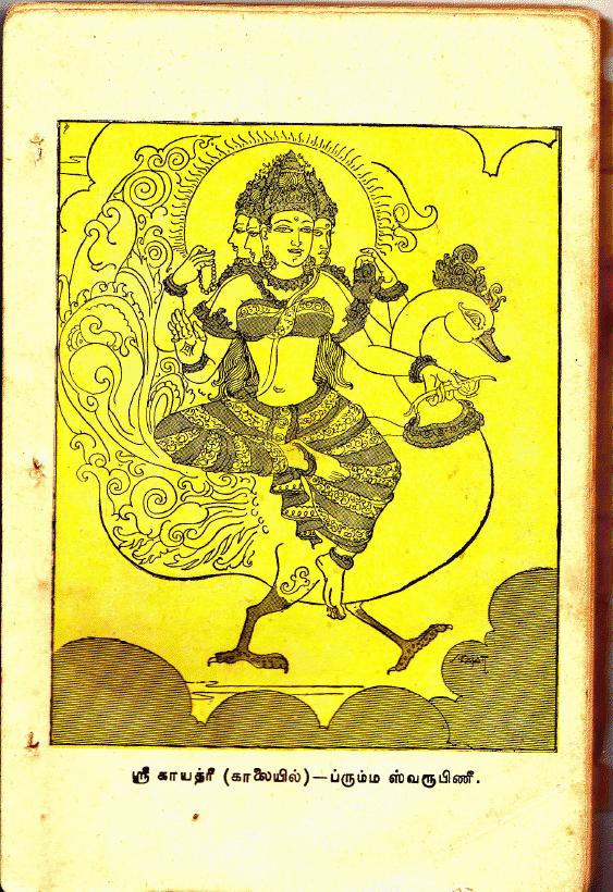 Sandhya Vandanam & Upakarma – Avani Avittam