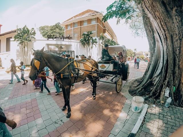 Kereta Kuda Tarikan Terbaru di Melaka