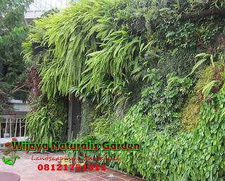 Taman Vertikal Surabaya, Taman Vertikal di Surabaya, Tukang Taman Vertikal Surabaya, Jasa Pembuatan Taman Vertikal Surabaya
