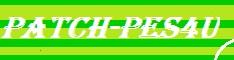 PATCH-PES4U